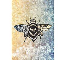 Sunshine, Honey and Rain  Photographic Print
