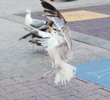 An Ambitious City Gull Sticker