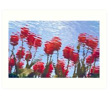 Reflected Tulips Art Print