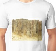 Petrified Forest!  Maybe! Maybe Not!!! Unisex T-Shirt
