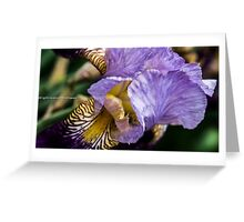 Iris queen Greeting Card