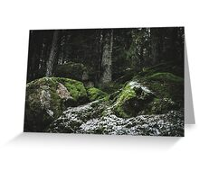 Swedish Forest Greeting Card