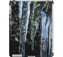 Icicle iPad Case/Skin