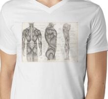 Human Anatomy 1 Mens V-Neck T-Shirt