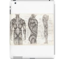 Human Anatomy 1 iPad Case/Skin