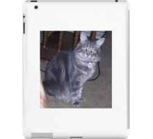 A Silver Maine Coon Kitten iPad Case/Skin