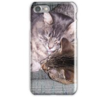 Best Buddies at nap time iPhone Case/Skin