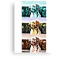 Labrador golden blue red retriever Dog Canvas Print
