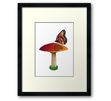 Mushroom and Butterfly Framed Print