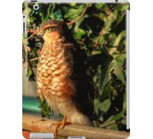 Just sitting on the fence iPad Case/Skin