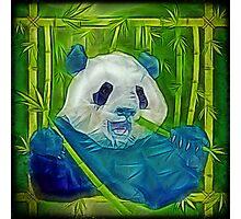 abstract panda Photographic Print