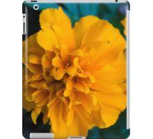Spring Flower Series 60 iPad Case/Skin