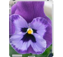 Spring Flower Series 65 iPad Case/Skin