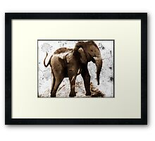 Cave Elephant  Framed Print