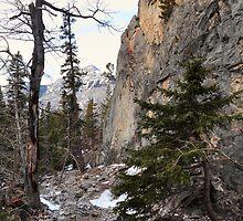 Climbers canyon by zumi
