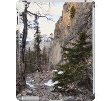 Climbers canyon iPad Case/Skin