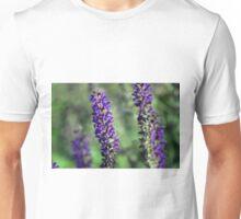 Longwood Gardens - Spring Series 144 Unisex T-Shirt
