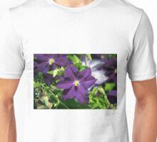 Longwood Gardens - Spring Series 147 Unisex T-Shirt