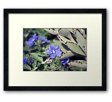Longwood Gardens - Spring Series 151 Framed Print