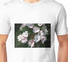 Longwood Gardens - Spring Series 166 Unisex T-Shirt
