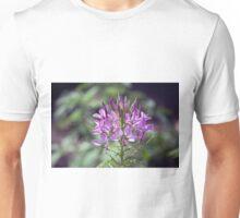 Longwood Gardens - Spring Series 170 Unisex T-Shirt