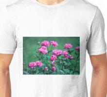 Longwood Gardens - Spring Series 177 Unisex T-Shirt