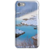 scenic winter landscape iPhone Case/Skin