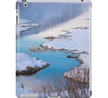 scenic winter landscape iPad Case/Skin