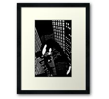 Night Spider Framed Print