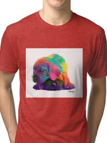 Colorful Puppies Tri-blend T-Shirt