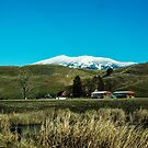 The Holland Ranch, Plains, Montana by Bryan D. Spellman