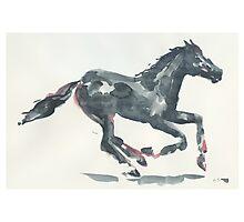 Horse 01 Photographic Print
