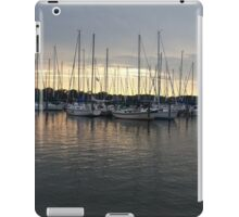 Cove by Day iPad Case/Skin