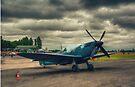 Reconnaissance Spitfire Fires Up by Nigel Bangert