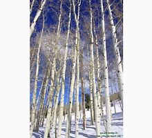 The Aspen Trees of Deer Valley Classic T-Shirt
