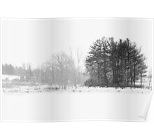 Black White Winter cold day Poster