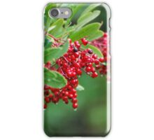 Berries iPhone Case/Skin