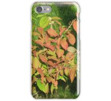 Autumn Leaves of Russet and Green iPhone Case/Skin