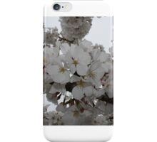 Cherry Blossoms in full bloom iPhone Case/Skin