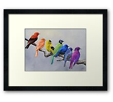 Birds of all Colors Framed Print
