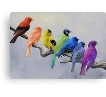Birds of all Colors Canvas Print