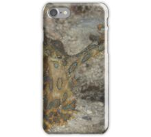 Blue-ringed Octopus iPhone Case/Skin
