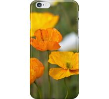 Poppies 1 iPhone Case/Skin