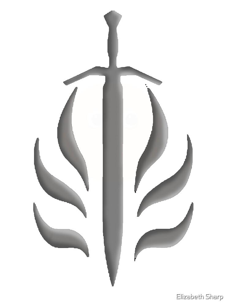 The Templar Order by Elizabeth Sharp