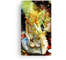 sying fairy Canvas Print