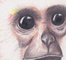 Island Monkey Sticker