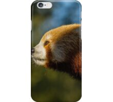 Red panda nose iPhone Case/Skin