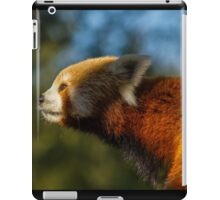 Red panda nose iPad Case/Skin