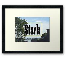 Stark Skyline Framed Print