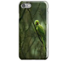 Green Ringnecked Parakeet iPhone Case/Skin